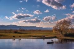 Water Soil Sky