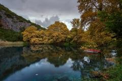 Pond Of Golden Silense